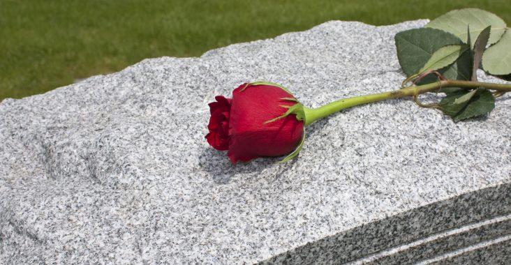 Rose og grav